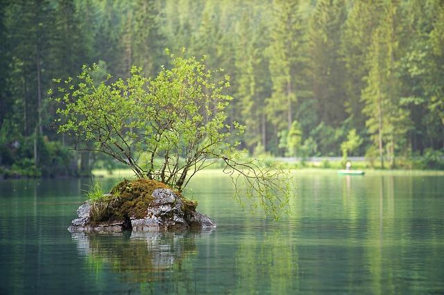 kámen v řece